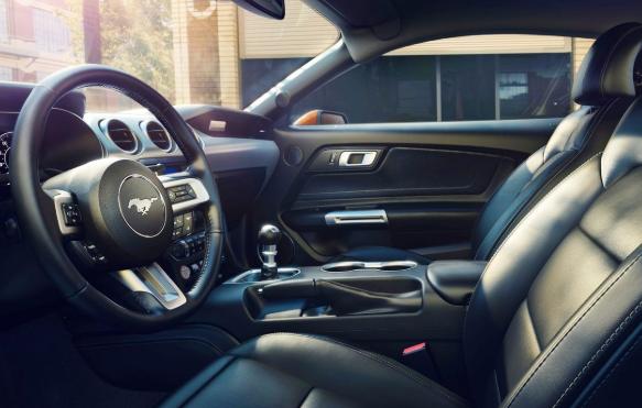2021 Ford Cobra Interior